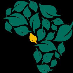 SEAD e.V. – Nachhaltige Entwicklung